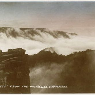 Misty View from The Pinnacle